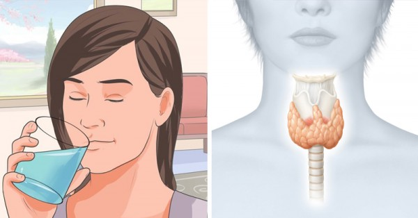 How to Reset Your Thyroid to Burn Fat and Activate Your ...